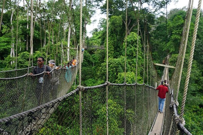 Must Go in Ghana: Kakum National Park