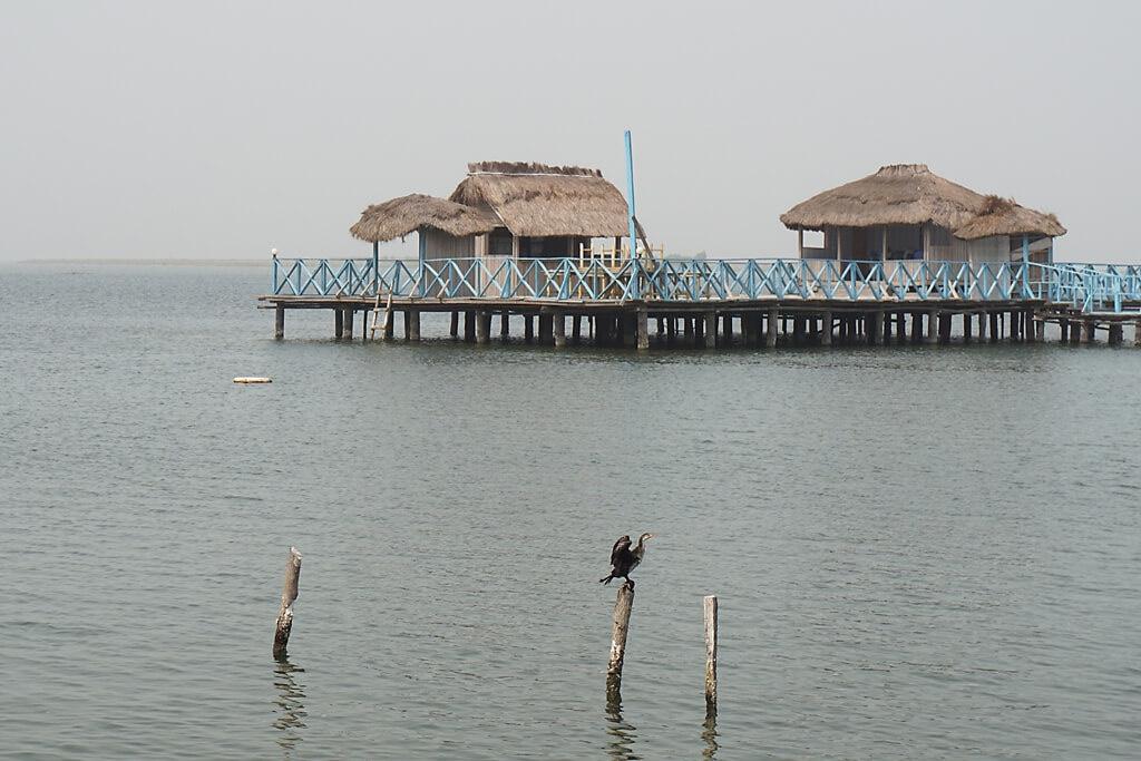 Ghana: Vogelparadies auf der Keta Lagune