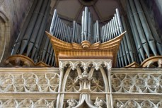 Orgel im Stephansdom