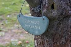 Rosenapfel (?) in Rosendals Trädgård