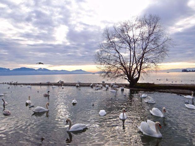A voyage across lake Geneva, Travel Realizations, Switzerland