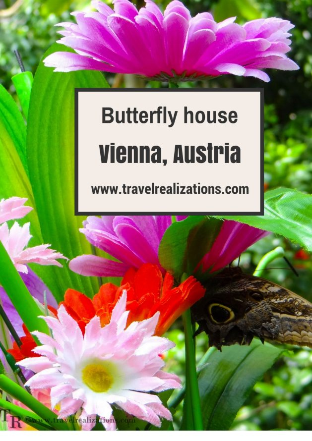 "I was lucky to get an opportunity to visit ""The Butterfly House"" in Vienna, Austria recently. In one word the experience was delightful. #Travel #Vienna"
