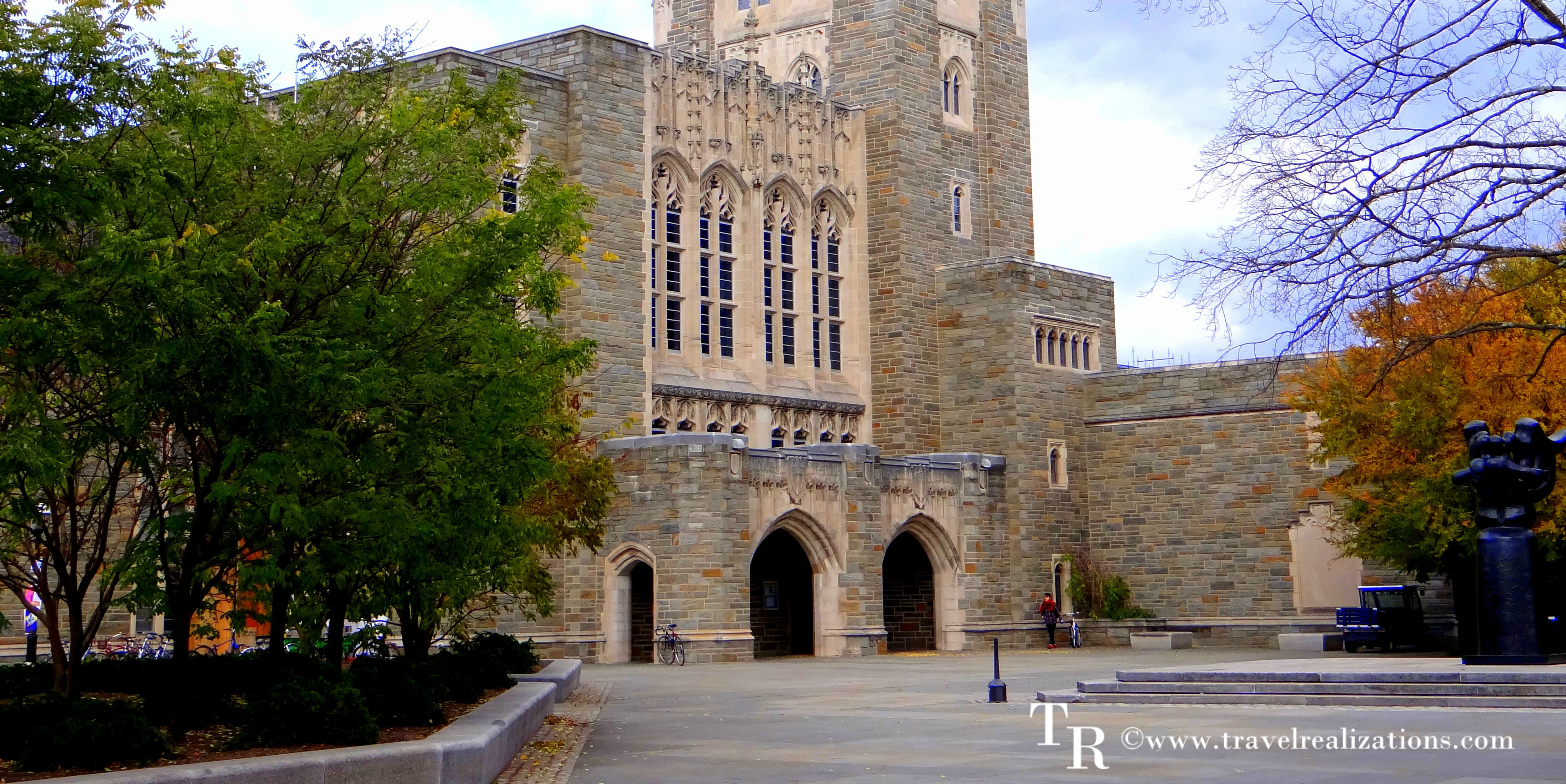 The Library of Princeton University - A Paradise!