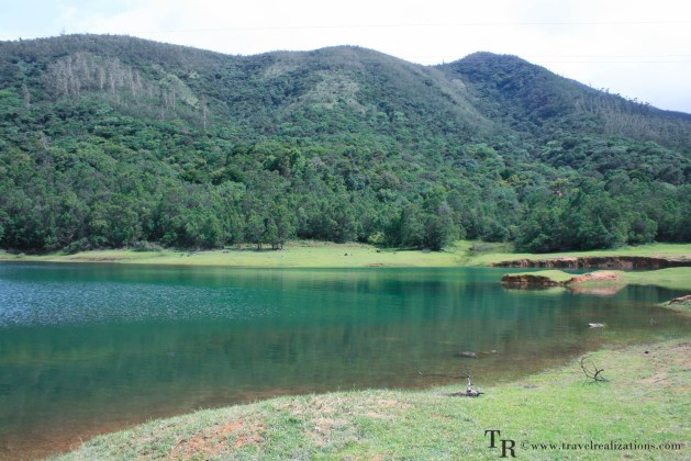 Lake inside the Avalanche forest, Encounter with the tiger in Avalanche Forest, India, Travel Realizations