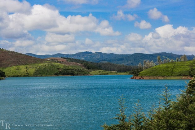 A honeymoon, a tiger and an adventure in Ooty, India!
