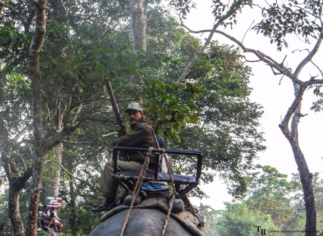 Travel Realizations, Kaziranga, elephant safari, forest safari, Indian forest safaris, a man with the gun