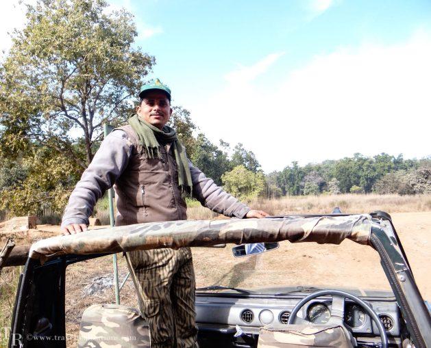 Travel Realizations, An enchanting forest safari, Bandhavgarh national park, Madhya Pradesh