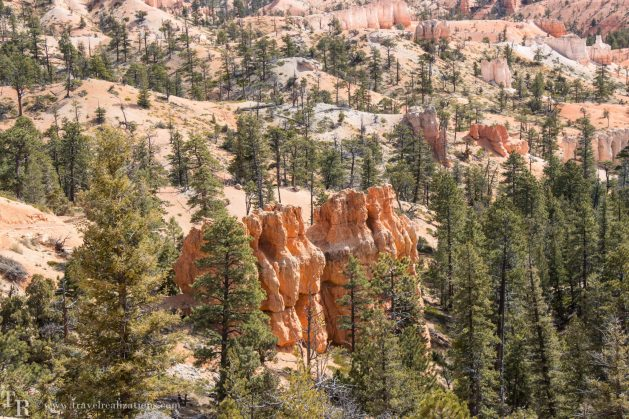 Hoodoos, Travel Realizations, Bryce Canyon National Park - indescribable masterpiece of nature!