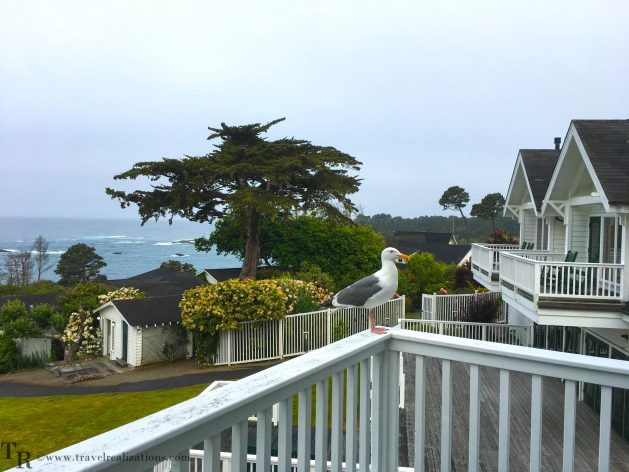 Little River Inn, Mendocino, Hotel, Northern California