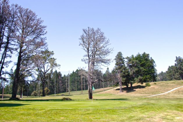 Little River Inn, Mendocino, Hotel, Northern California, golf course