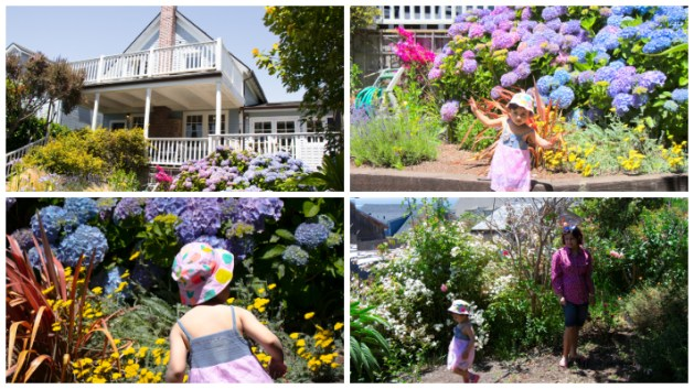 JD House - A beautiful boutique hotel in blooming Mendocino, California, JD House, USA, garden, garden in JD House