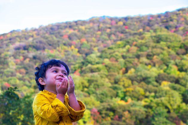 The Blue Ridge Parkway - A passage through paradise, Travel Realizations, USA, North Carolina, Blue Ridge Mountains,Chirantana, fall colors, Autumn