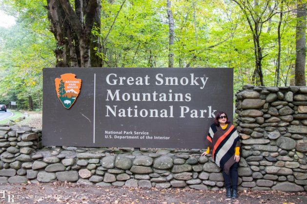 A coffee cup and a story in the Smoky Mountains National Park, Travel Realizations,