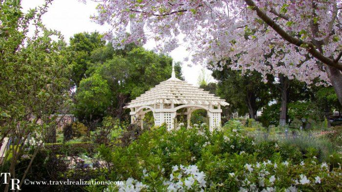 San Francisco Bay Area Gardens to Visit in Spring