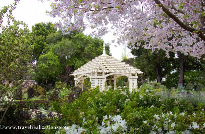 San Francisco Bay Area Gardens to Visit in Spring