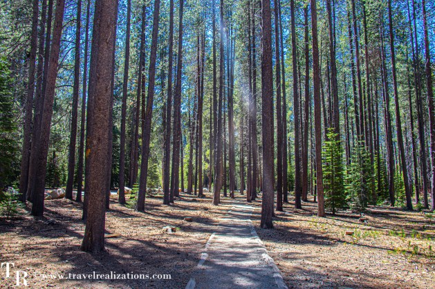 Lake Tahoe in Summer, Travel Realizations, Donner Memorial State Park
