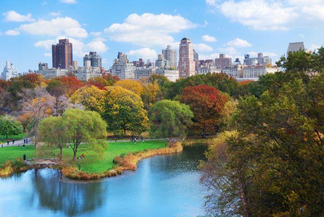 New-York-in-autumn