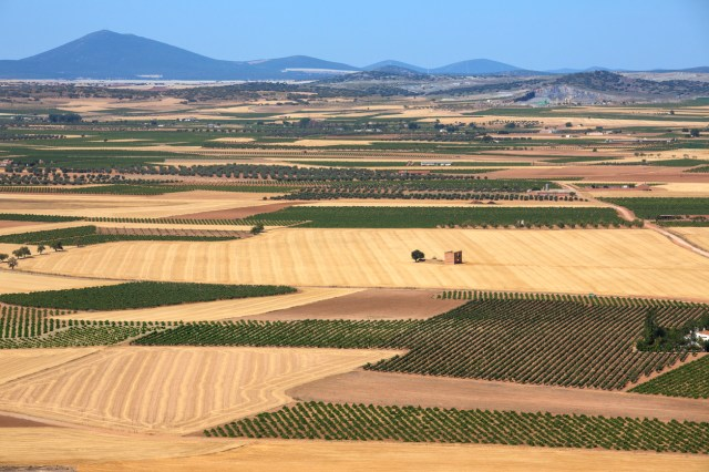 Vineyards and farmland near Consuegra in the La Mancha region of central Spain.