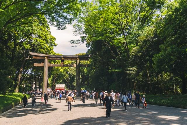 Yoyogi Park, Japan