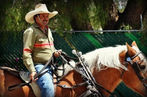 Happy Cowboy. Unhappy horse.