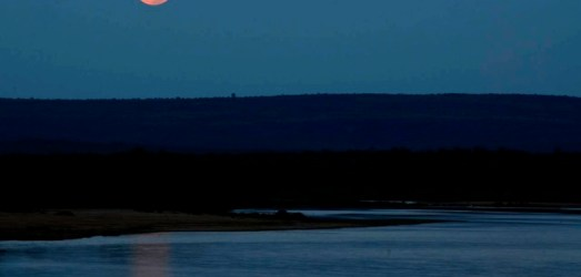 An 8-day Kruger Safari: Full Moon over Letaba