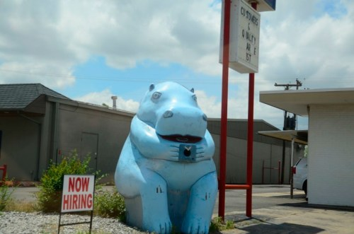 The OK Blue Hippo