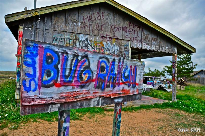 Bug Ranch at Conway