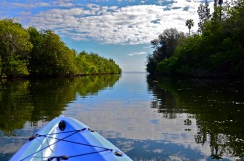 Kayaking Indian River Lagoon