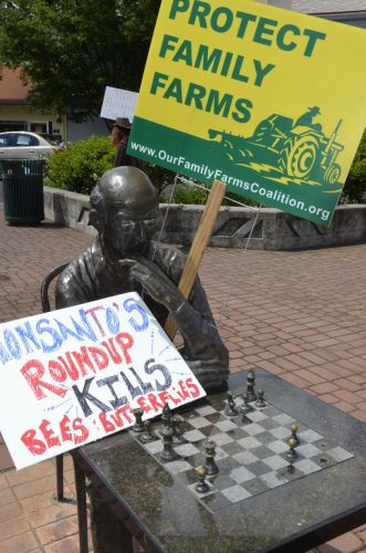 Downtown Medford a Statue Marching Against Monsanto