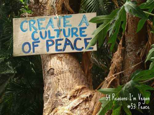 Veganism is a nonviolent practice