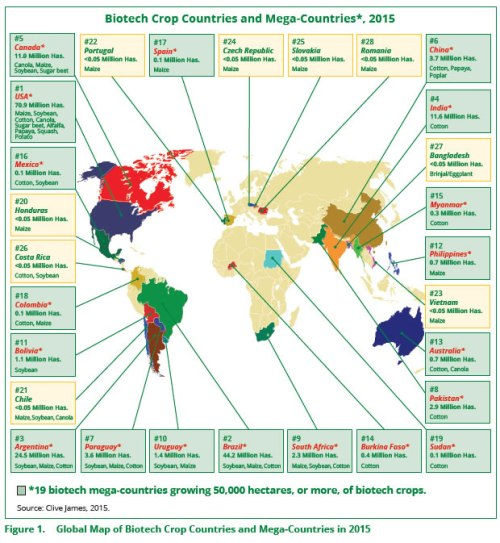 biotech-crop-countries-and-mega-countries