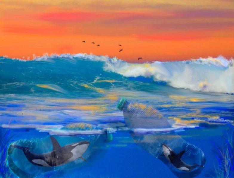 Plastic Waste is Harming the Ocean