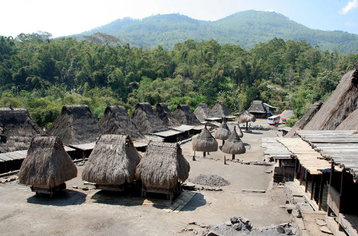 bajawa villages cool things to do in flores indonesia
