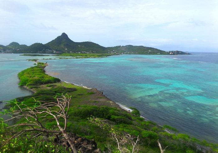 tobago cays marine park island union