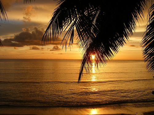 Fiji Beach www.travelscamming.com
