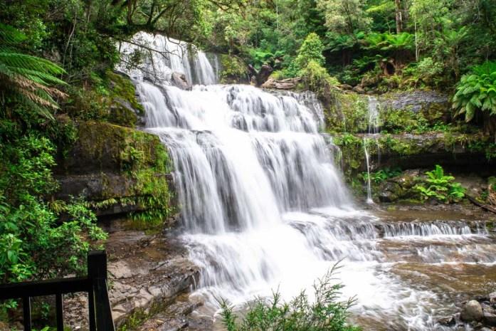 Liffey Falls, Best Day Trips in Tasmania