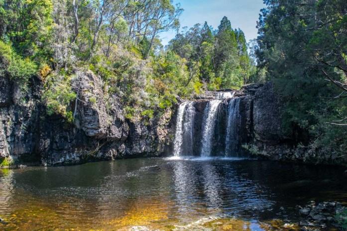 Pencil Pine Falls, Waterfalls in North Tasmania