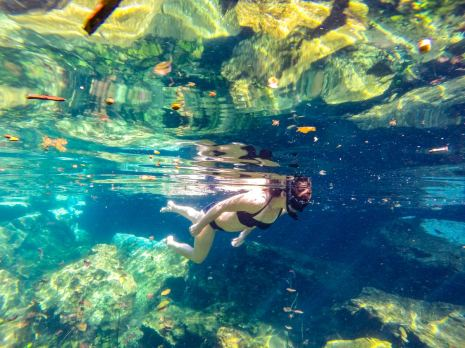 Schwimmen in dem Cenote Chikin Ha