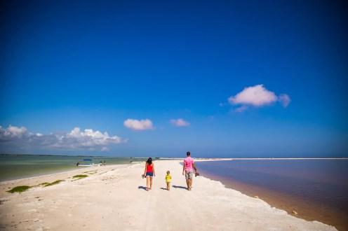 Rio Lagartos Las Coloradas Yucatan