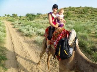 Bikaner Kamelsafari