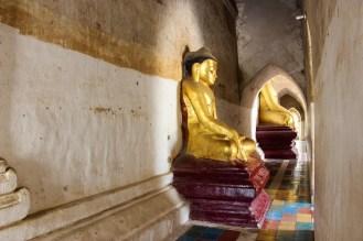 Sitzende Buddhas im Gawdawpalin Tempel
