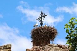 Storchennest Kirche