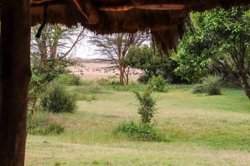 Aussicht Camp Masai Mara