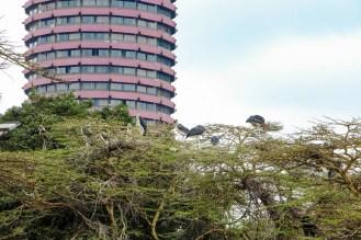 Marabu Nairobi