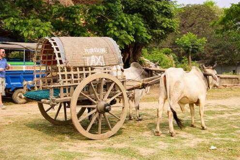 Mingun Taxi