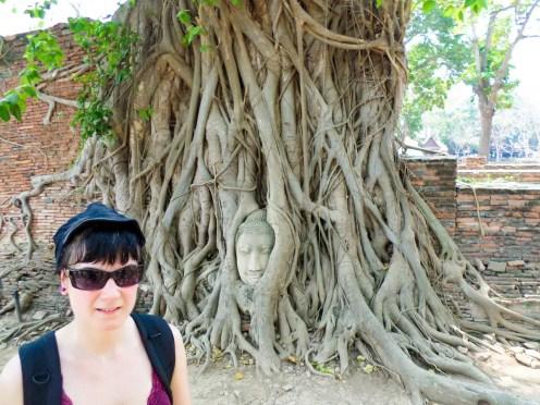 Buddha Kopf Wat Mahathat Ayutthaya