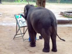 Elefant malt Bild im Thai Elephant Conservation Center