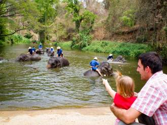 Elefanten baden im Thai Elephant Conservation Center