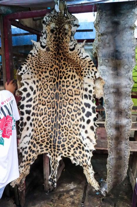 Jaguarfell und Schlangenhäute auf dem Belen Markt