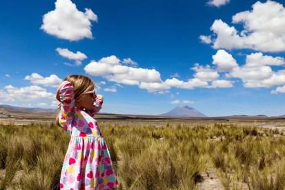 Blick auf Vulkan Misti von Patahuasi